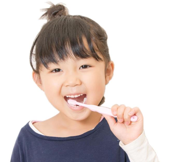 「ひまわり歯科」歯みがき指導について