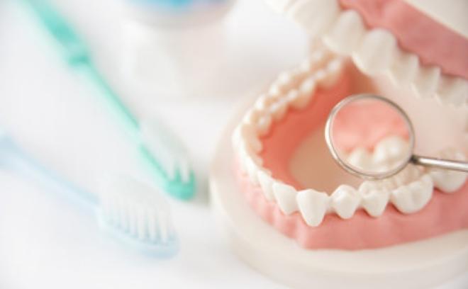 「ひまわり歯科」義歯 (入れ歯)